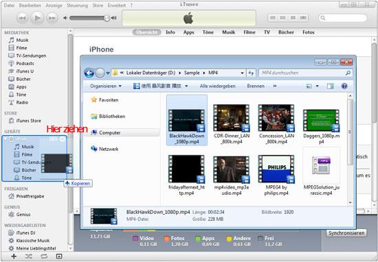 dvd auf ipod laden